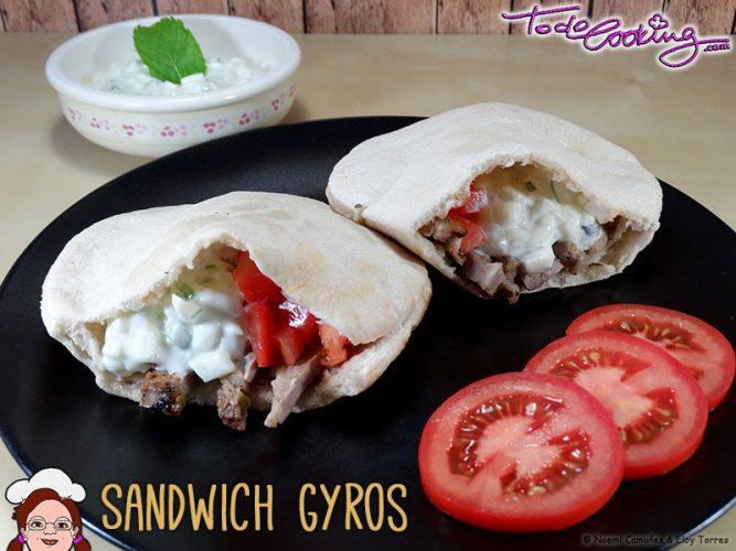 Sandwich-Gyros2